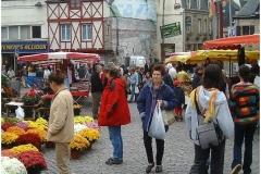 locmine-market